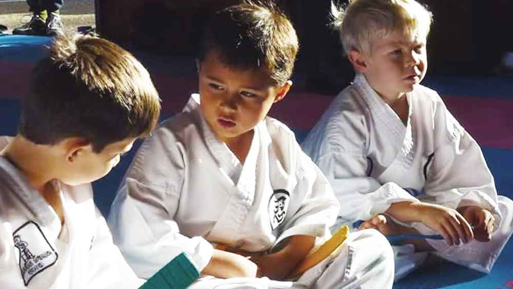 japanese martial arts essay example The following essays were published in the roaring tiger newsletter of the ko- sho  the history of karate belts and ranks  japanese in the dojo.